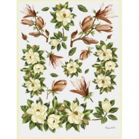 Papier do decoupage Decomania, Magnolie [serie 7/067b]