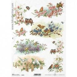 Papier ryżowy do decoupage, wiosenne ptaszki, kwitnące drzewa, kwiaty, wiosna  - ITD R1070