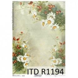 Papier ryżowy A4 ITD R1194,...