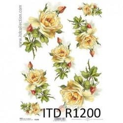 Papier ryżowy A4 ITD R1200,...