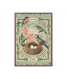 Papier ryżowy Stamperia A4. Country life - ptaszki