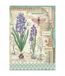 Papier ryżowy Stamperia A4. Botanic - hiacynt