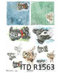 Papier ryżowy A4 ITD R1563,...
