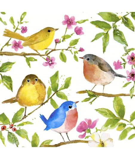 Serwetka do decoupage - Kolorowe ptaszki