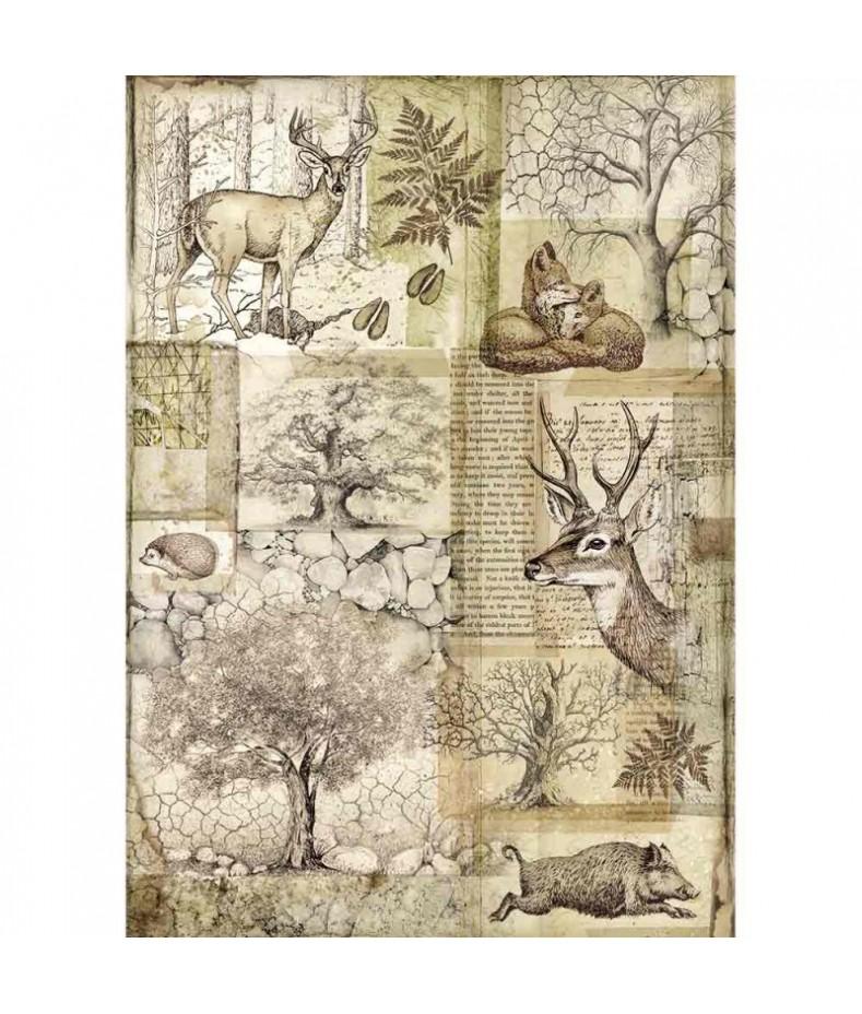 Papier ryżowy Stamperia A4 - Forest sepia - leśne zwierzęta DFSA4426