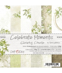 Zestaw papierów do scrapbookingu 15x15 Craft O'Clock, Celebrate Moments