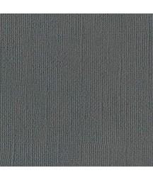 Papier do scrapbookingu, bazowy błękitny, Bazzill Ash Canvas - szary