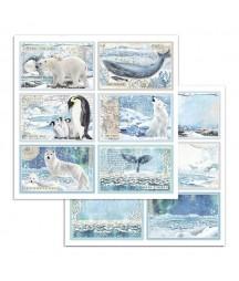Papier do scrapbookingu 12x12, Stamperia - Arctic - karty 4x6 SBB732