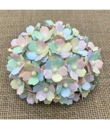 Kwiatki do scrapbookingu Rainbow Pastel Sweetheart Blossom SAA-535 15 mm, 10 szt.