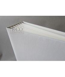 Album BAZYL kremowy z białą okładką 162x212