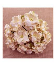 Kwiatki do scrapbookingu Deep Ivory Gardenia Flowers SAA-341 60 mm, 5 szt.