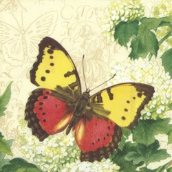 Serwetka - Motyle 33