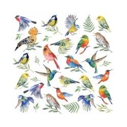 Serwetka - Ptaki 6