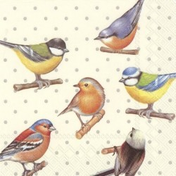 Serwetka - Ptaki 3