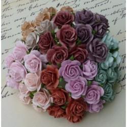 Kwiatki do scrapbookingu Mixed Vintage Colour Open Roses SAA-046 10 mm, 10 szt.
