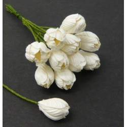 Kwiatki papierowe, White...