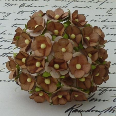 Kwiatki papierowe, 2-Tone Brown Sweetheart Blossom, 10 szt. [SAA-199]