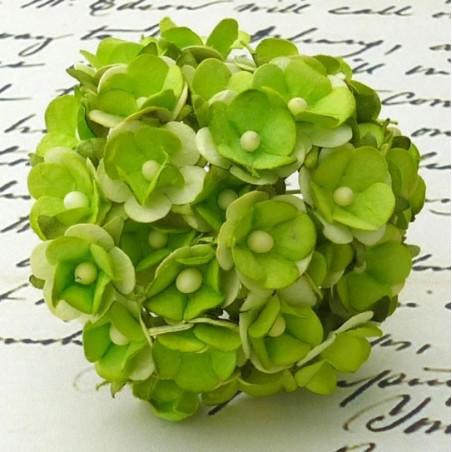 Kwiatki papierowe, 2-Tone Green Sweetheart Blossom Flowers, 10 szt. [SAA-192]