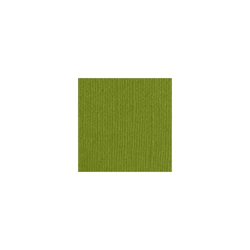 Papier do scrapbookingu, bazowy oliwkowy, Bazzill Hillary - canvas