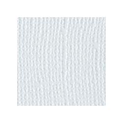 Papier do scrapbookingu, bazowy błękitny, Bazzill Powder Blue - canvas