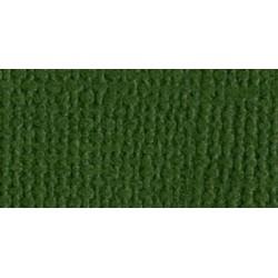 Papier do scrapbookingu, bazowy zielony, Bazzill Ivy - canvas