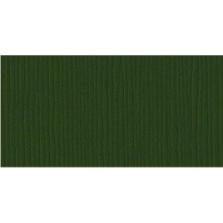 Papier do scrapbookingu, bazowy ciemnozielony, Bazzill Avocado - grass cloth